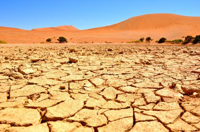 【飛行機内は砂漠よりもドライ !?】肌の乾燥対策のプロ、現役CAに聞く「潤いスキンケア」